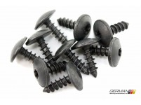 Body Panel Screw (5x16), OEM (Set of 10)